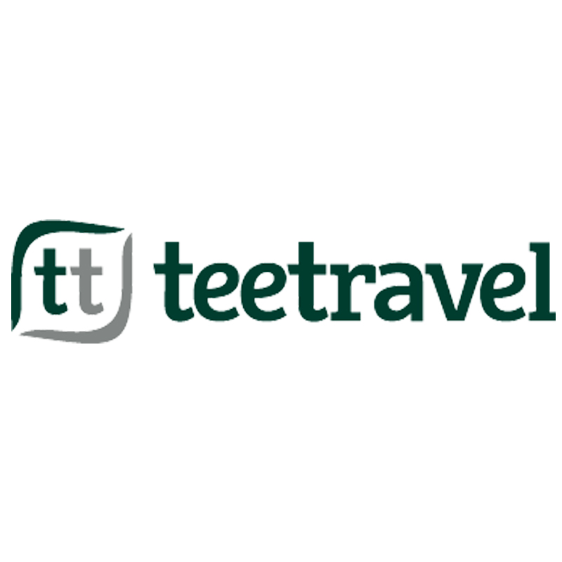 Logo Tee Travel
