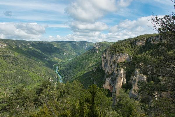 Vue sur les gorges du Tarn depuis le causse Méjean  - ©Marie H Ray